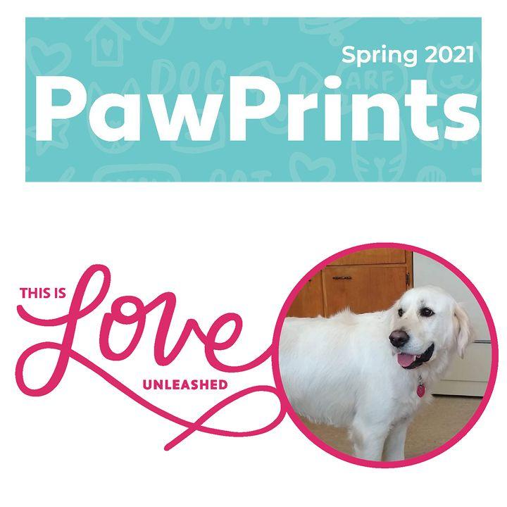 Spring 2021 PawPrints Newsletter