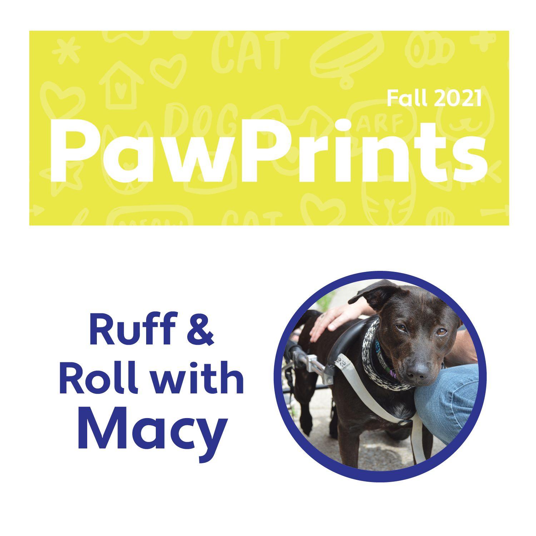 Fall 2021 PawPrints Newsletter